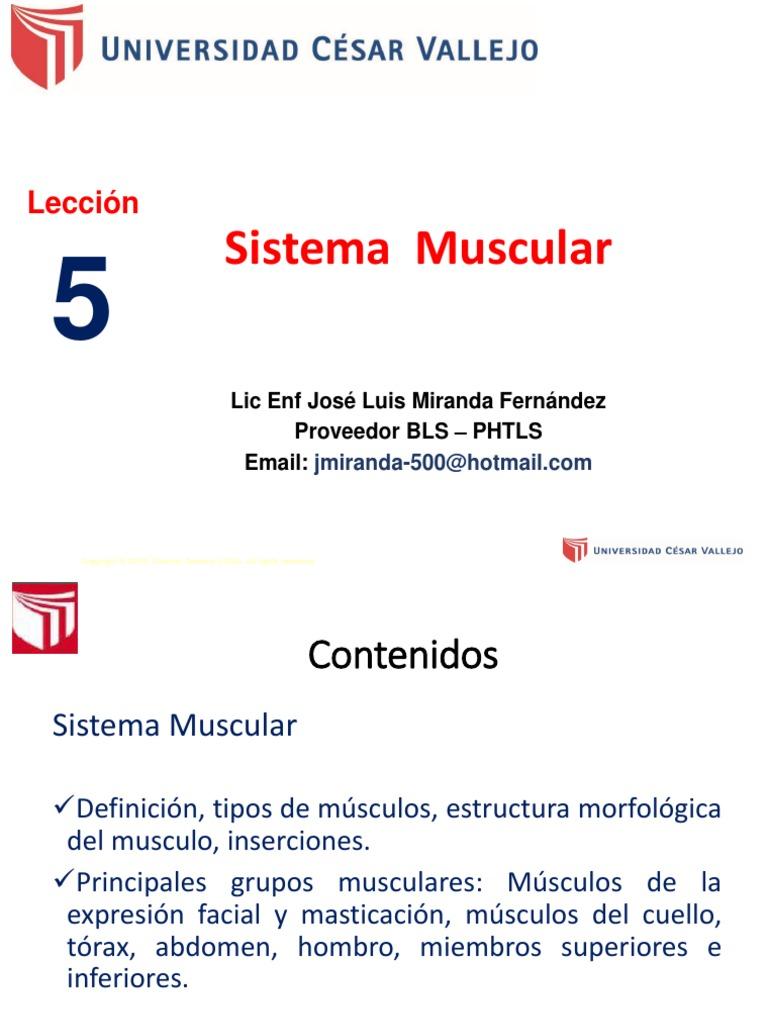 Sesion De Aprendizaje No 5 4 Pdf