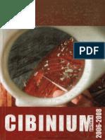 09 CIBINIUM Muzeul Astra 2006 2008 II
