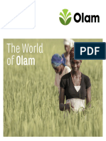 World of Olam