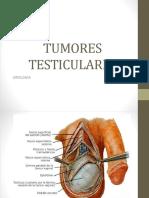 tumorestesticulares-160609234101