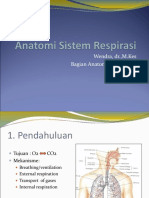 189499774-Anatomi-Sistem-Respirasi.ppt