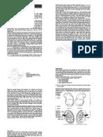 Kidney - RD2002