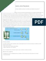 Descripción de La Coagulación y de La Floculación