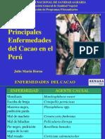 Enfermedades Del Cacao