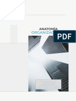 Manual Anatomía Organizacional