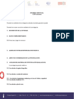 Informe Gerencial Blanco