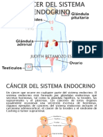 Cancer Del Sistema Endocrino