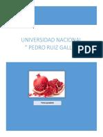 Producto-La-granada.docx