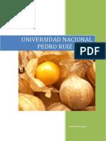 2.-Practica Perfil de Mercado
