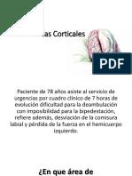 Áreas-Corticales MAPAS clase.pdf