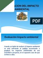 104548244 Evaluacion de Impacto Ambiental