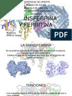 Transferrina y Ferritina