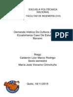 Demanda Hidrica - Vizcaino.docx