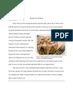 second inquiry paper 3