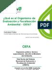 1.-Qué-es-el-OEFA