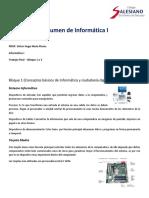 Resumen Informática I