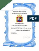 monografia-acerca-de-la-estimacion-de-la-demanda-final-final.docx