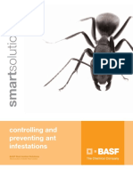 Ant Solution Guide