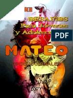 Desafios-Para-Jovenes-y-Adolescentes-Mateo.pdf