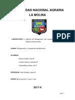 Informe-1-2017-II