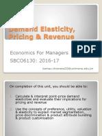 Unit 5 Elasticity Pricing Revenue