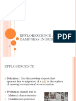 DAMPNESS AND EFFLORESCENCE