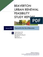Burfs Report 021210