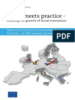 Enabling the Growth of Social Entrerprises - 2013 Social Entrepreneurship Network