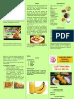 Gastronomia Selva Peruana Triptico