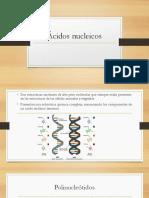 Ácidos Nucleicos PAOLA
