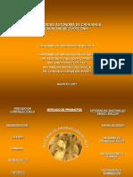 Sistemas de Produccion de Pato (1)
