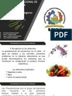Pseudomonas y Alcaligenes