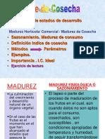 indicecosecha1