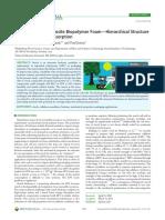 Cellulose Nanocomposite Biopolymer Foam