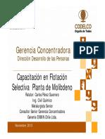 218470246-Curso-Flotacion-Selectiva-de-Mo.pdf