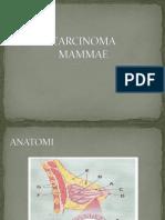 Carcinoma Mammaenew