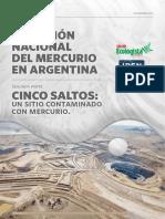 Cinco Saltos Un Sitio Contaminado Con Mercurio - Taller Ecologista IPEN