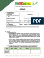 6 FORMATO DEL INFORME FINAL DE TOE 2013.pdf