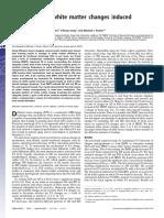 Cambios en la materia blanca.pdf