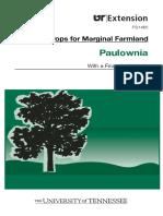 PAULOWNIA TENESSE.pdf