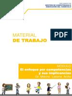 Bases Teóricas Material de Trabajo - Enfoque