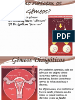 Sistema Rep. Humano e Gamet. - Métodos Contracep. e DSTs