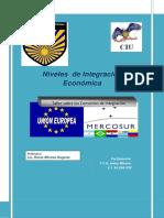 Informe Niveles de Integración