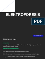 Uas Elektroanalitik Tm 12 Elektroforesis