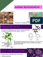 Analisa-Karbohidrat Ilzamha (1)