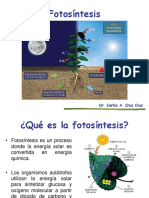 7.-Fotosíntesis-1