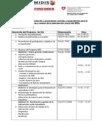 Programa capacitación social NED.doc