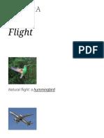 Flight .pdf