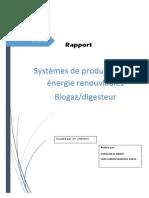 Systèmes de production des énergie renouvlables Biogaz/digesteur