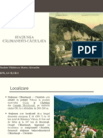 Statiunea Calimanesti-Caciulata